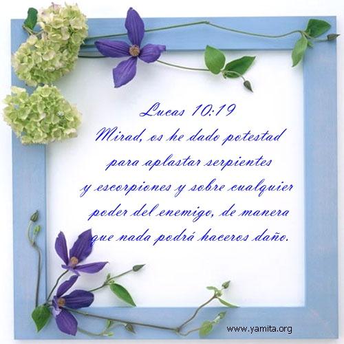 Lucas 10-19  Maritza