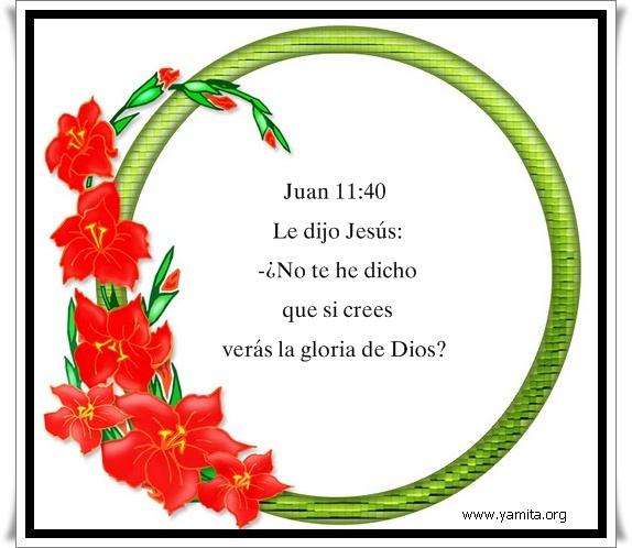 No te he dicho que si crees verás la gloria de Dios