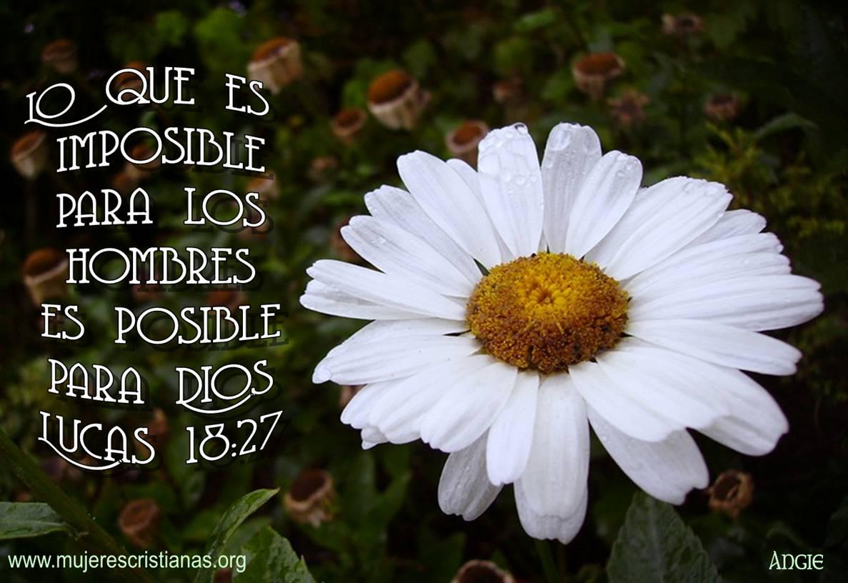 Es posible para Dios