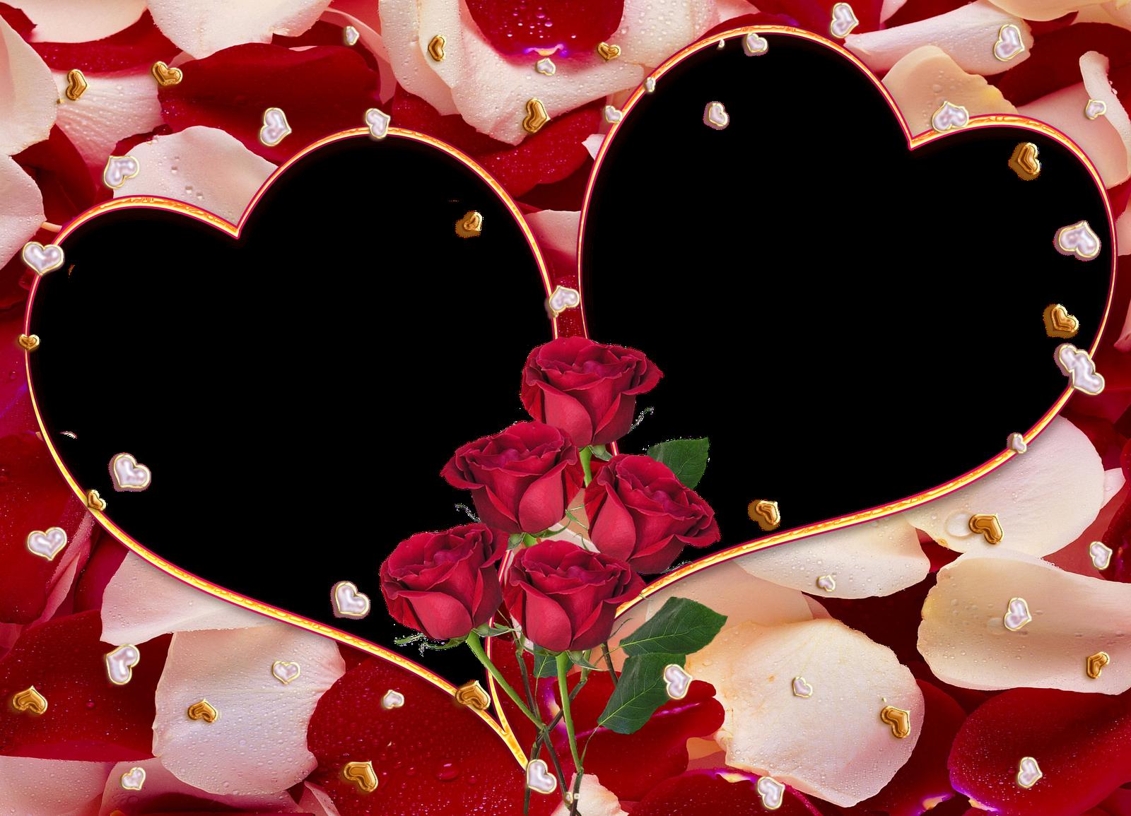 El Lenguaje universal: El Amor