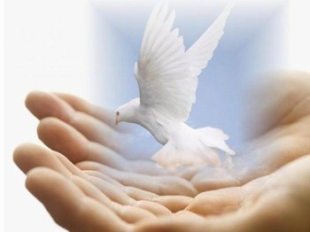 El regalo de su paz - Angie García