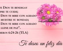 Que Dios te bendiga y siempre te cuide