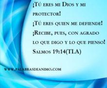 ¡Tú eres mi Dios y mi protector!