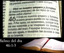 Salmo diario Dios es nuestro amparo y fortaleza